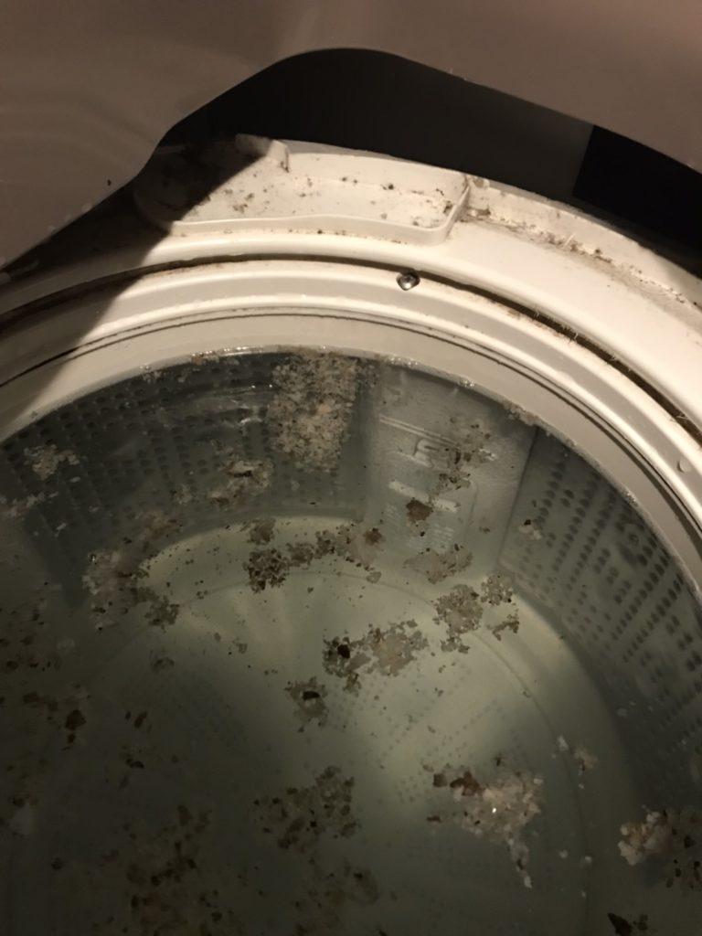 洗濯機・洗濯槽を洗ったらすごいことになった